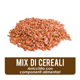 Esca in mix di cereali